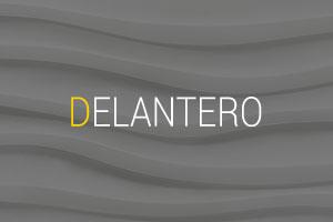 Delantero-logo
